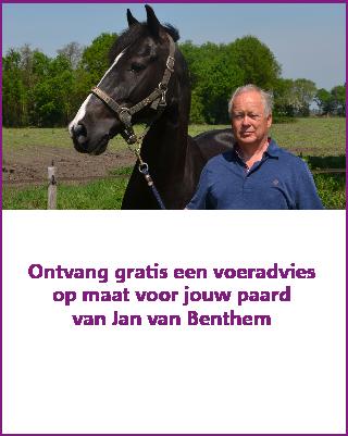 Voeradvies op maat voor je paard van Jan van Benthem