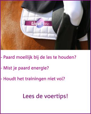 Extra magnesium voor paarden