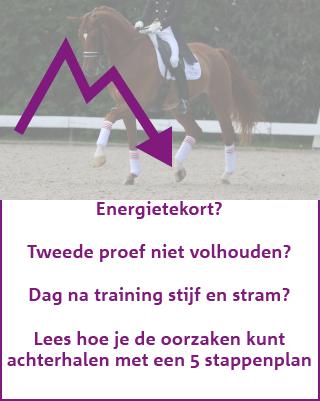 Paard te weinig energie