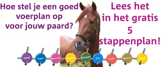 Wat is het beste voer voor jouw paard?
