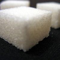 Mineralen en vitaminen drachtige merrie